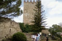 Enna castello e il panorama_3